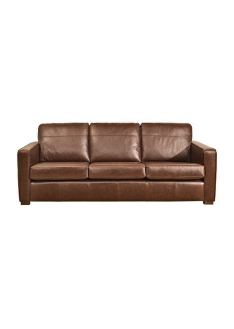 Pigmented Or Protected Leather