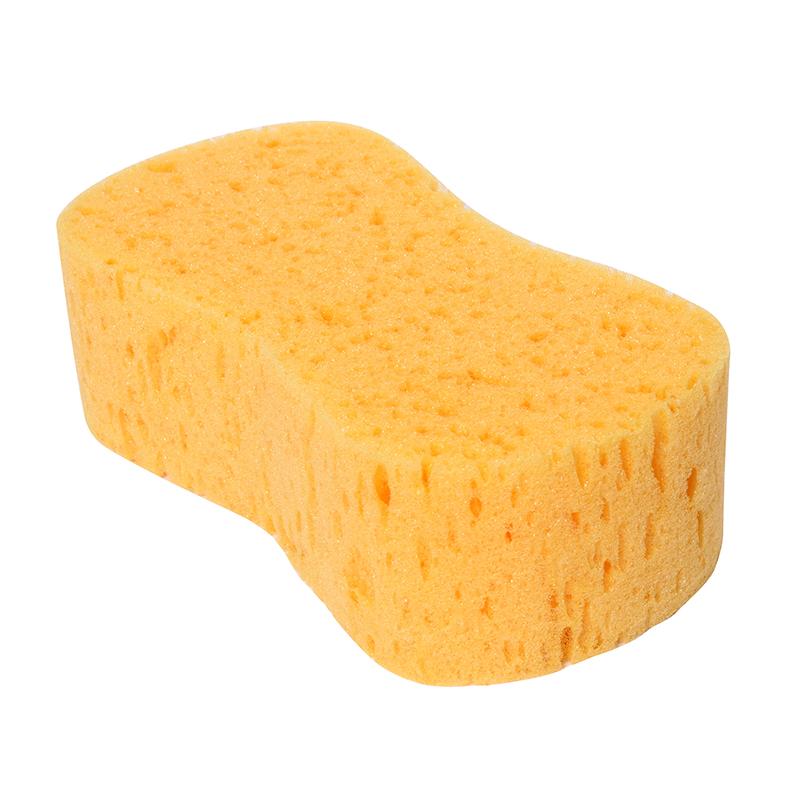 Sea Sponge Car Wash